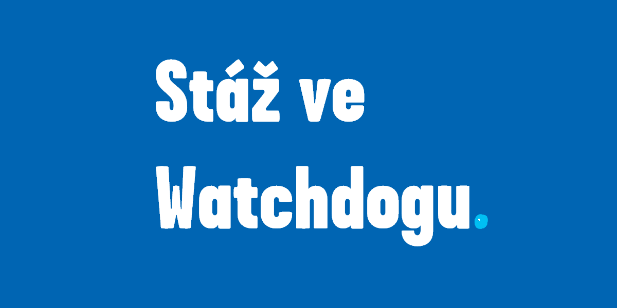 Stáž ve Watchdogu.