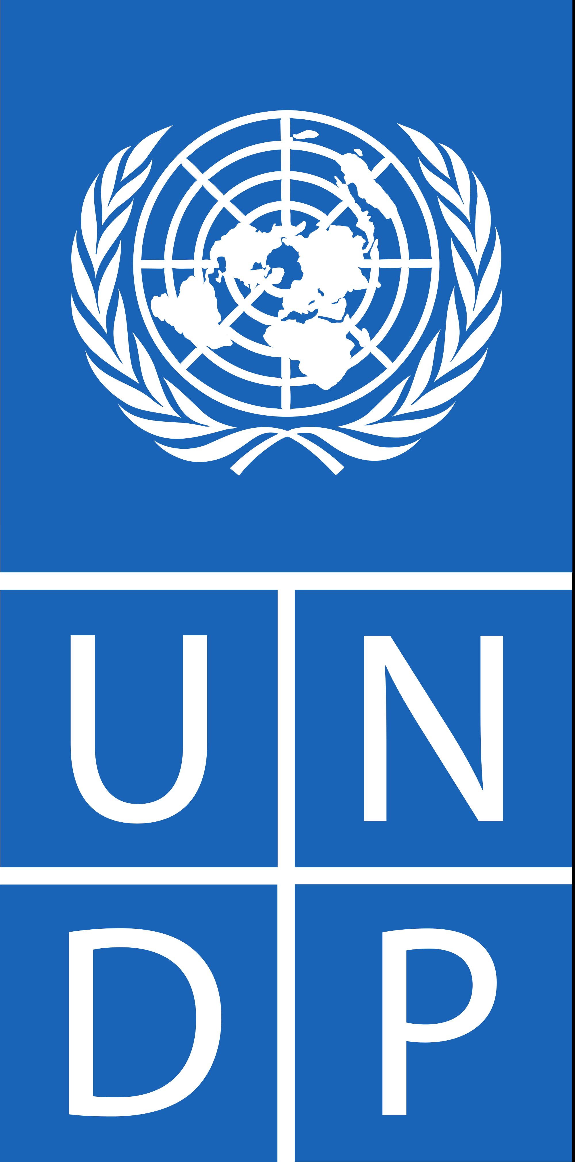 UNDP - Logo